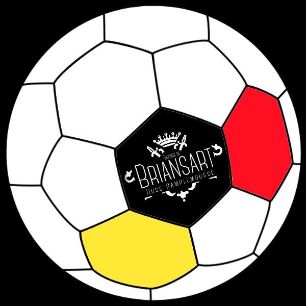 ballon de foot noir jaune rouge avec écusson Briansart rosé pamplemousse oublie ce 3 et ré-GALLES-toi